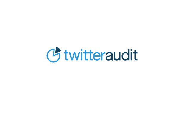 Twitter audit logo