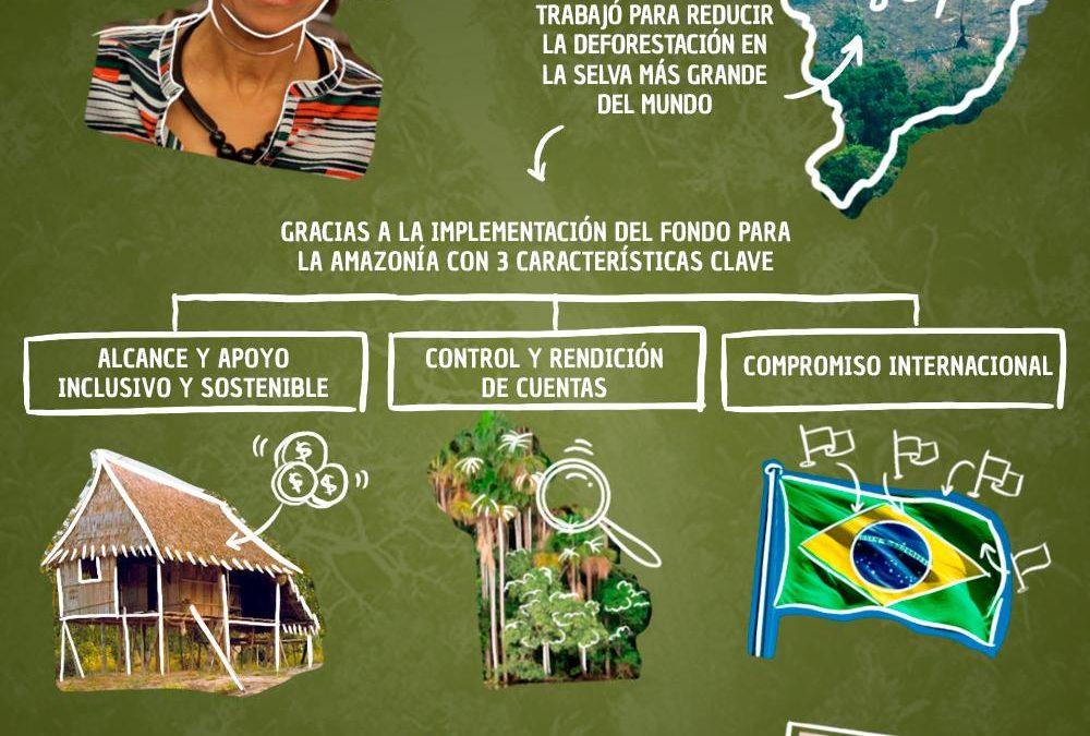 Reacciones infoactivistas a los incendios en la Amazonia